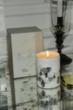 Jason Wu Orchid Rain Candle by NEST Fragrances