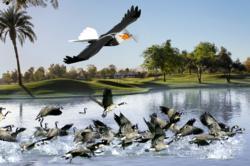 birdxpeller-drone
