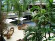 Asian Garden in boutique Miami Hotel