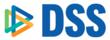 DSS Makes Greater Reading Top 50 Business List