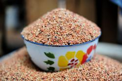 Pic by Neil Palmer (CIAT). Sorghum at Sawla market in Ghana's Northern Region.