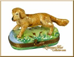 Collectible Golden Retriever Dog Limoges Box www.LimogesBoxCollector.com
