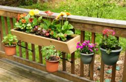 container gardening kit