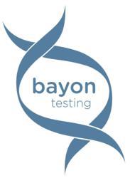 Bayon Testing Logo