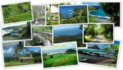 Road to Hana Tour