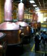 Huge vats in the Tequila distillery.  (photo courtesy No Mas!)