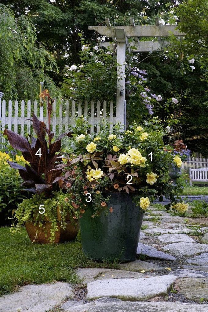 Overwhelmed By Mixed Containers Try These 10 Tips From The Pros