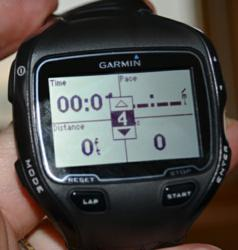 garmin 910xt, data fields