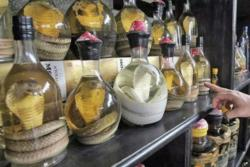 snake wine, Hanoi, Vietnam