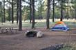Campsite at Ten-X campground
