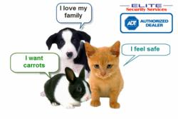 Pet Lovers Hail Elite Security Services for the Introduction of Advanced Motion Detector to their Home Security Systems