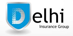 Delhi Insurance Group of Ohio