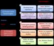 Outline of the Experimental Program