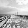 Coney Island, black and white photograph, winter photograph, snow photograph