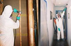 A San Francisco Bay Area mold remediation specialist inspecting a new home.