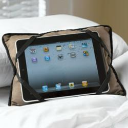 iBuddy iPad Holder