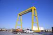 ProservCrane Group 30 Ton Gantry Crane