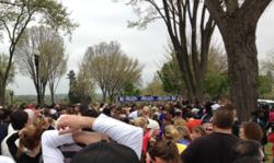 40th Annual Credit Union Cherry Blossom Ten Mile Run