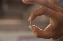 pet microchip