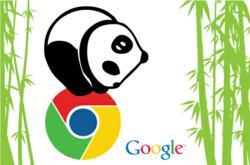Google-Panda-SEO.com