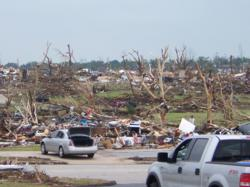 Tornado Tree Devastation