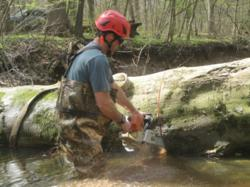 Tree Removal by Mike Teti, Giroud Tree and Lawn, standing in deep water as he cuts a Beech Tree into large pieces