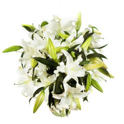 gift bouquet, charitable gift, WWHI, casa blanca lily bouquet, casa blanca lilies, lilies