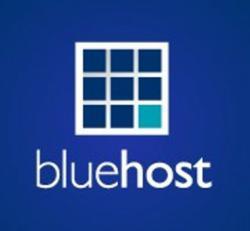 BlueHost Google AdWords Credit