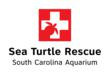 Multi-Facility Sea Turtle Release Between the South Carolina Aquarium...