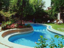 Chlorine Free Swimming Pools a Reality with Copper Ionizer ...