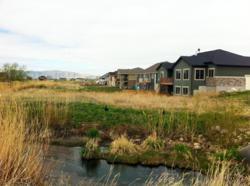 Jessies Brook - Springville UT Homes