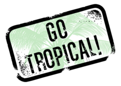 Tropical Roofing Products Gains National Attention With Miami Dade County Approval Of Roof