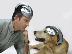 USB Brain Massager: The Head Spa