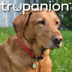 Pet insurance Trupanion Idaho