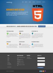 Screenshot of the Temporary Web Design NY NY Site