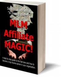 darren little, mlm superhero, mlsp, mlm lead system pro, my lead system pro, that mlm beat, top 50 mlm blogs, mlm affiliate magic, mlm mentors, mlm coaches, mlm trainers, mlm leaders