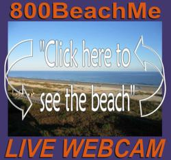 Hilton Head Island Web Cam, Live Video Hilton Head Beach