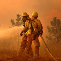 Wildland Fire Equipment