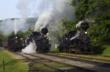 Visitors can ride an authentic steam engine at Cass Railroad State Park