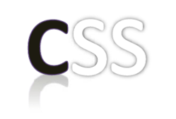 Clinical Support Services, Inc. (CSS) company logo