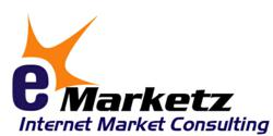 E Commerce Website Designing Company