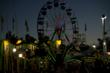 Carnivals, Circus, and Festival in the Shenandoah Valley