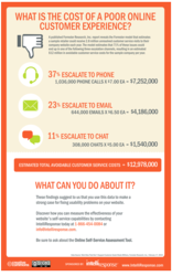 Infographic - The Cost of a Poor Online Experience