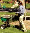 Lawn Maintenance Colorado