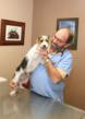 Jacksonville Veterinarian Cautions that the Recent Warm Winter and...
