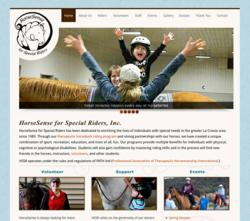 HSSR, horsesense, special riders, horseback riding, therapeutic, the blu group, website design, web