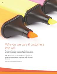 Voice of the Customer Free E-book Sample Page