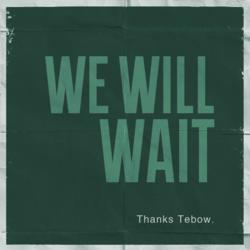 We Will Wait is a Global Movement of Teens Following Tim Tebow's Lead to Wait till Marriage for Sex