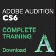 http://www.larryjordan.biz/app_bin/Store/catalog/product_info.php?products_id=283 ,Larry Jordan,Adobe training,Adobe CS6,