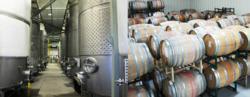 Papagni Winery, Madera Winery, Madera Wine Tasting, Wine tasting